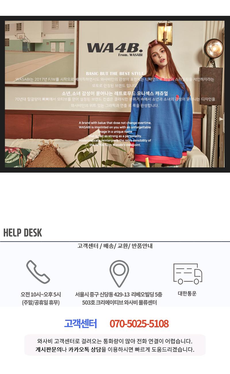 WA8SKT2_BR5.jpg