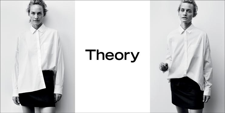 Theory_BANNER_1488580529022.jpg
