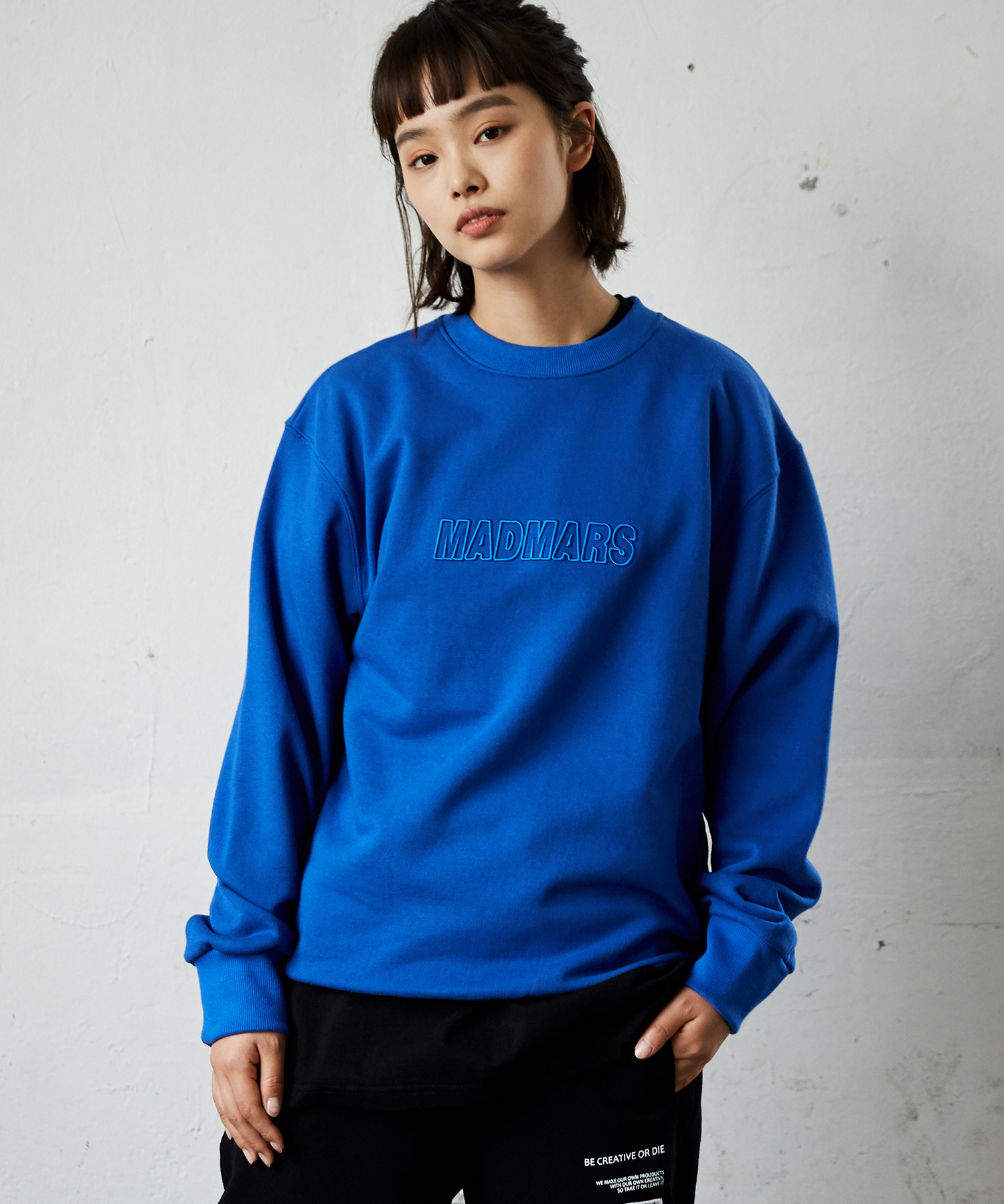 RELIEF EMBROIDERY SWEATSHIRTS_BLUE