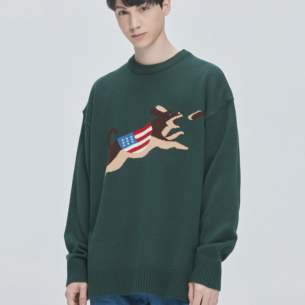 USA Jump Dog Knit Sweater (green)