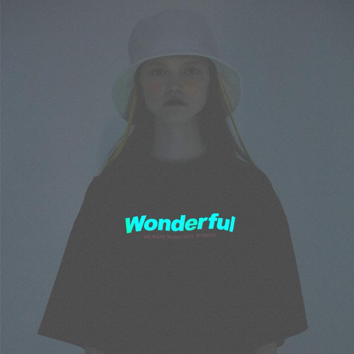 Wonderful NG Logo_Over