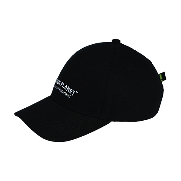 두줄 로고볼캡 BLACK