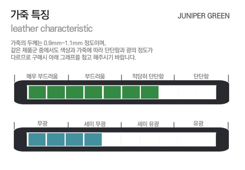 7. green leather.jpg