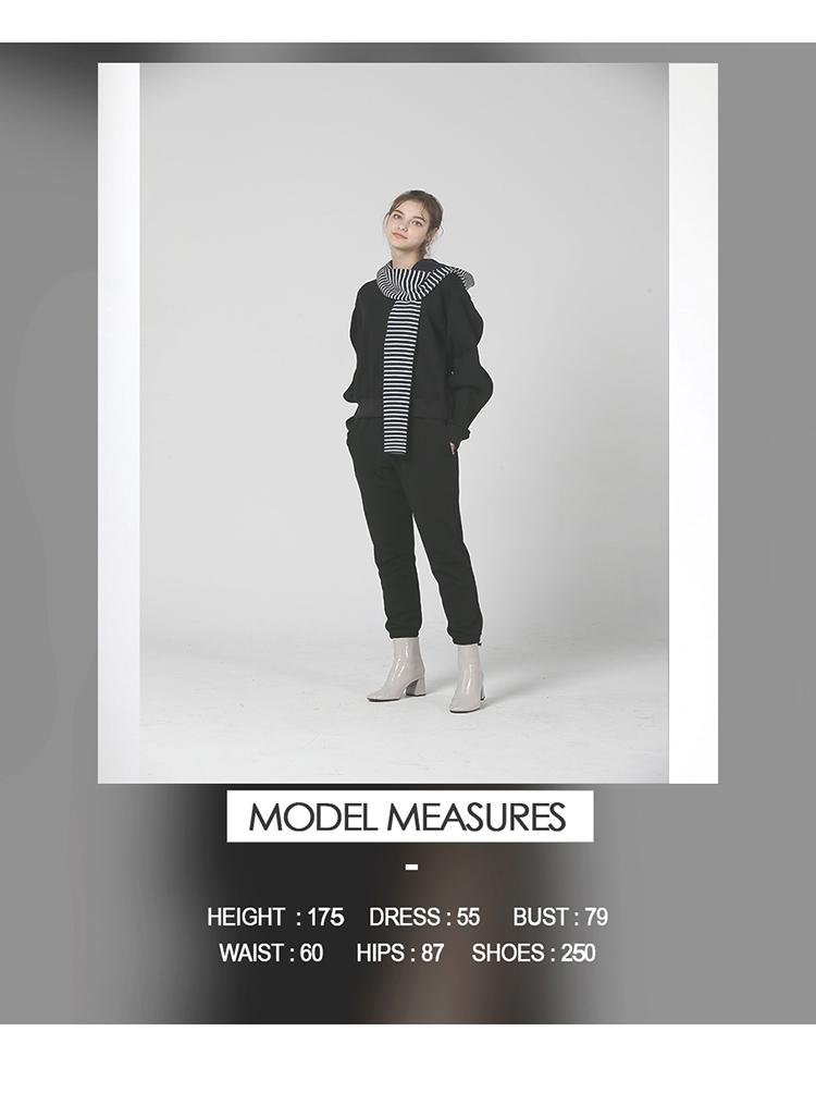 모델인포.jpg